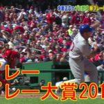 【 中居正広 】【 プロ野球 】珍プレー好プレー大賞2017 MLB編