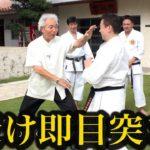 受けたら目突き?超実戦的すぎる沖縄空手の受け Uke of Okinawa Gojyu-ryu Karate
