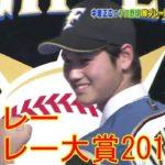 【 プロ野球 】珍プレー好プレー 大賞2017 大谷翔平編