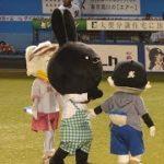 超絶カワイイッ♥ リーンちゃん、ズーちゃん ウサギの真似 黒田ウーサーと『We Love Marines』kawaii Japanese mascot♥️SEAGULL,black bunny