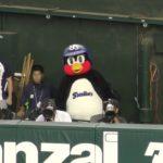 「ジャマだ!どけ!」つば九郎の野球観戦のジャマになるカメラマンに激おこ(# ゚Д゚) 2018.6.14