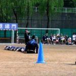 運動会競技:蛇の皮むき