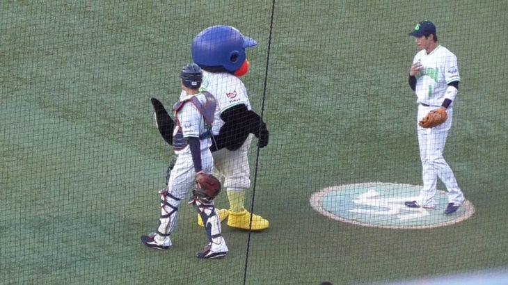 ヤクルト2017 つば九郎と山田哲人 作戦会議