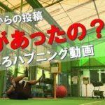 【お客様から動画提供】ハプニング動画 激しいフットワーク練習中に何が!