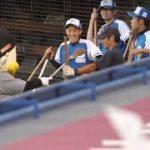 ズーちゃん球場整備の人に、ほうきを持ってちょっかい出すwwwつば九郎だったら酷いことになりそうwww