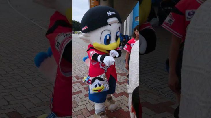 ズーちゃんめっちゃカワイイッ♥️ZOZO Marine stadium防災の日イベント