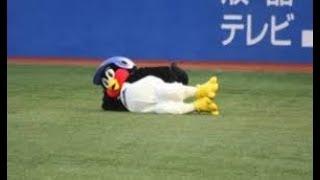 【プロ野球 珍プレー好プレー】~つば九郎君のかわいい行動カワ・∀・イイ!!~