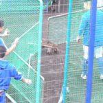 筒香危ない!!あわやのハプニング!! 何もなくてよかった 横浜DeNA 沖縄宜野湾キャンプ
