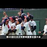 第49回日本少年野球春季全国大会 小学生決勝・中学生決勝