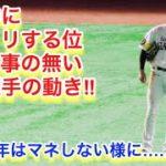 守備中にビックリする位、構える事の無い柳田選手の動き!