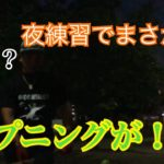 【夜練習でハプニング!?】Twitter野球部夜の部で驚き!?