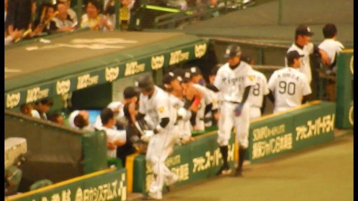 阪神タイガース2017/みんながびっくり。岡崎選手のプロ初ホームランの選手の様子と岡崎コール。(2017.06.03)